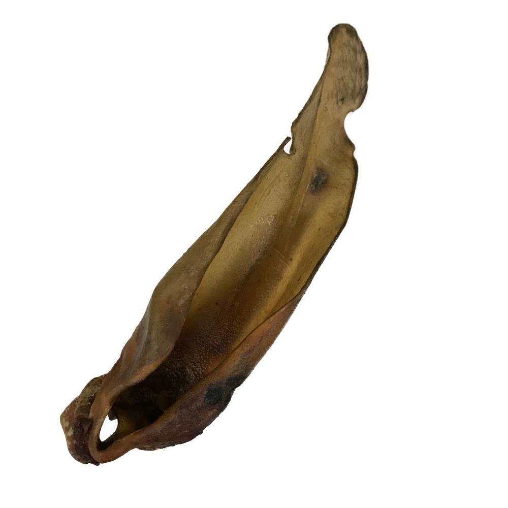 Buffalo Ear Large with Meat Natural Dog Chew