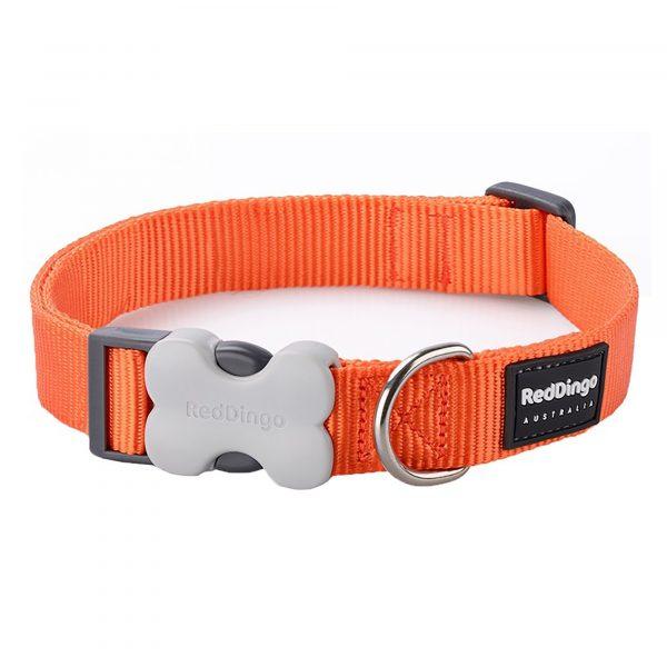Red Dingo Collar Classic Orange