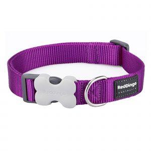 Red Dingo Collar Classic Purple