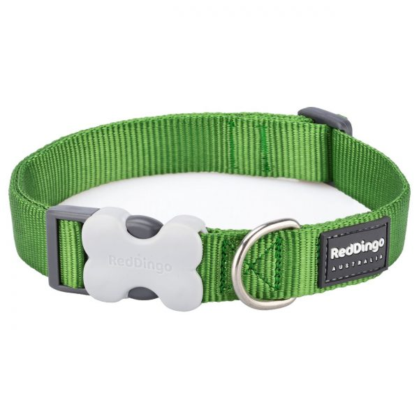 Red Dingo Lead Classic Green