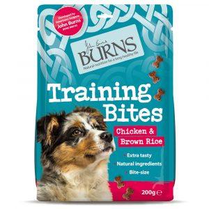 Burns-Training-Bites