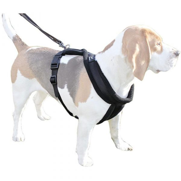 Miro-and-Makauri-Dog-Harness-Black-2